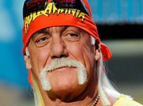 Hulk Hogan Online Wrestling