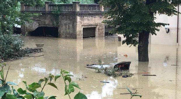 Risultati immagini per Non sono le piogge torrenziali e i venti violenti la causa della devastazione del nostro paese!