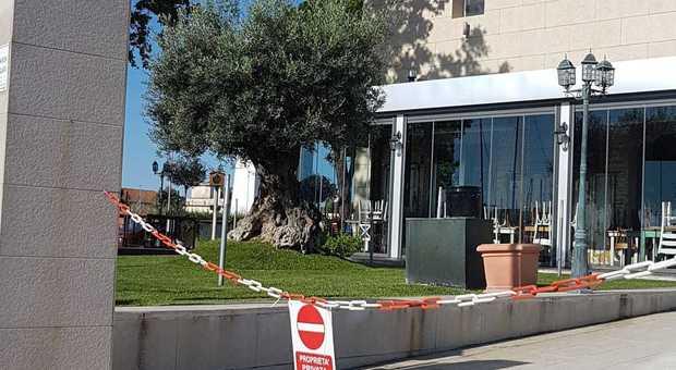 Zangrillo (San Raffaele): «Covid-19 non più capace di produrre malattia, lo dicono le cartelle cliniche»