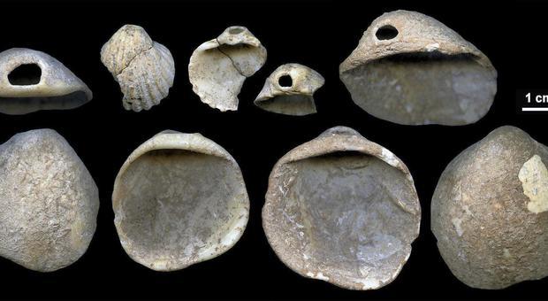 Come è radioattivo datazione usato per data fossili